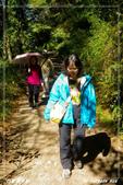 2011年合歡溪步道/天池:IMGP2940.jpg