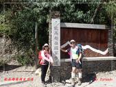 能高越嶺國家步道:PA114524.jpg