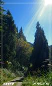 2011年合歡溪步道/天池:IMGP2941.jpg