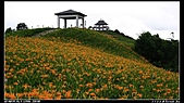 2010年與我同行之花東縱谷&六十石山:PIC_5835.jpg