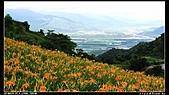 2010年與我同行之花東縱谷&六十石山:PIC_5836.jpg