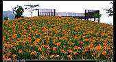 2010年與我同行之花東縱谷&六十石山:PIC_5837.jpg