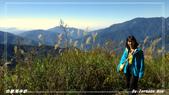 2011年合歡溪步道/天池:IMGP2942.jpg