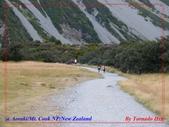 2020 紐西蘭〜庫克山國家公園:L1250181.jpg