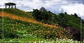 2010年與我同行之花東縱谷&六十石山:PIC_5839.JPG