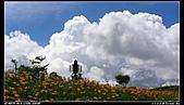 2010年與我同行之花東縱谷&六十石山:PIC_5840.jpg