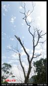2012年四獸山步道:IMGP4237.jpg