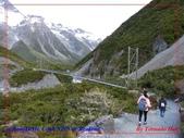 2020 紐西蘭〜庫克山國家公園:L1250188.jpg