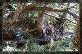 2013年再訪玉山主北峰:DSC01083.jpg