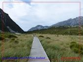 2020 紐西蘭〜庫克山國家公園:L1250279.jpg