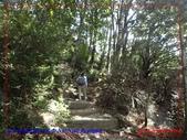 2020 紐西蘭〜庫克山國家公園:P1276413.jpg