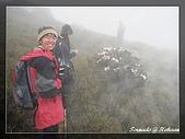 2010年合歡山:DSC07542.jpg