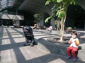 150212大安森林公園:150212 04大安森林公園.jpg
