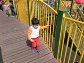 150212大安森林公園:150212 20大安森林公園.jpg