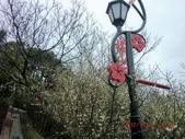 120116~17嘉南旅遊(第1天):120116 005嘉義-梅山公園.jpg