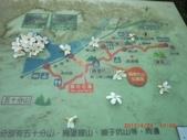 120424桐花開了 鳶山群峰-油桐花開了:120424 06福德坑山.jpg