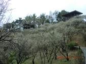 120116~17嘉南旅遊(第1天):120116 014嘉義-梅山公園.jpg