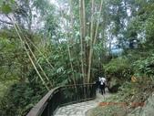 141115南投-玻璃吊橋:141115 19信義鄉-玻璃吊橋.jpg