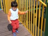 150212大安森林公園:150212 19大安森林公園.jpg