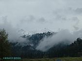南北疆旅遊之28印象雲杉:20天地為家雲作裳的雲杉.JPG