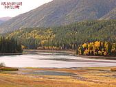 南北疆旅行之二掀開序幕:140喀納斯湖神仙灣.jpg