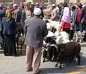 南北疆之45屋簷下的喀什(下):10戶外牲畜巴扎6.jpg