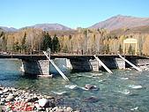 南北疆旅遊之10小河灣灣禾木村:49禾木河上禾木橋.jpg