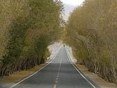 南北疆之完結篇《走在帕米爾高原上》:07黃楊隧道5.JPG