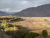 南北疆之完結篇《走在帕米爾高原上》:09楊柳旁的草原.JPG