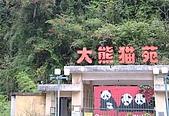 從貓熊來台說起:01臥龍大熊貓保育區.JPG