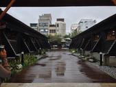張順嬌咖啡莊園:2013-05-11 182340.JPG