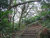 甘露寺登南天母山:石階步道