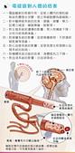 智慧型手機-靜輻寶 防電磁波貼片&抗電磁波圍裙~減少90%以上:防電磁波貼片DM03.jpg