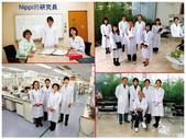 日本 NIPPI 魚鱗膠原蛋白肽:日本NIPPI網站~04日本的研究團隊