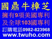 國鼎生物科技股份有限公司-安卓奎諾爾Antroquinonol研發成果:A國鼎牛樟芝.jpg