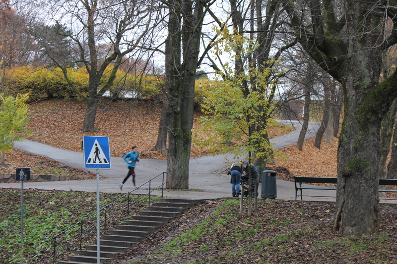 IMG_8104.JPG - 2013挪威