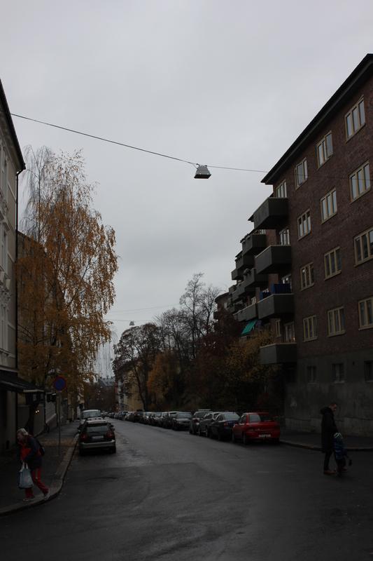 IMG_8105.JPG - 2013挪威