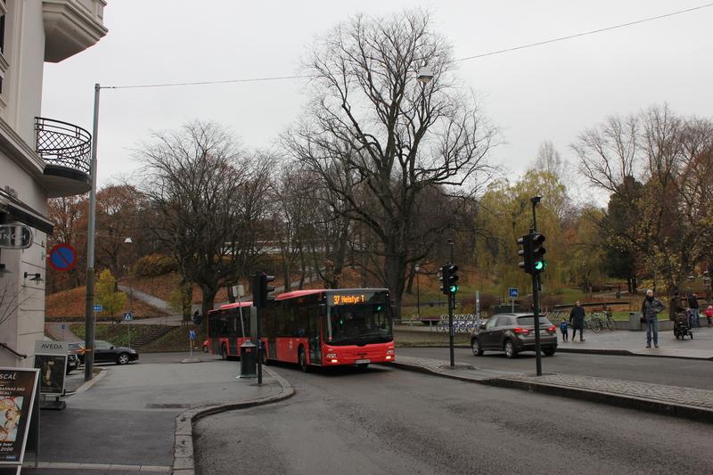 IMG_8102.JPG - 2013挪威