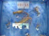 螃蟹博物館+傳藝中心:螃蟹博物館