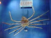 螃蟹博物館+傳藝中心: