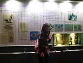 畢旅:2010  社小畢業旅行 142.jpg